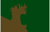 Wesselt Capital Group